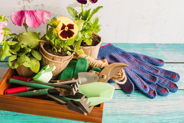 Gardening equipment with peat pots plant and gardening gloves on wooden table Free Photo