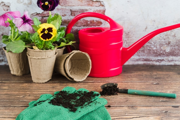 Gardening flowers in peat pots; watering can; shovel and gardening gloves on wooden desk Free Photo