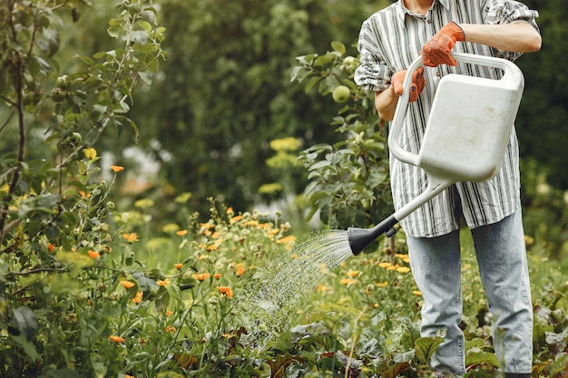Gardening in summer. woman watering flowers with a watering can. girl wearing a hat. Free Photo