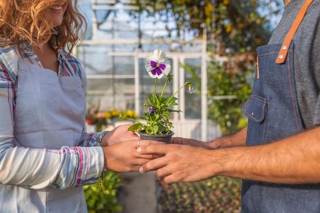 Gardners working in the garden center Premium Photo