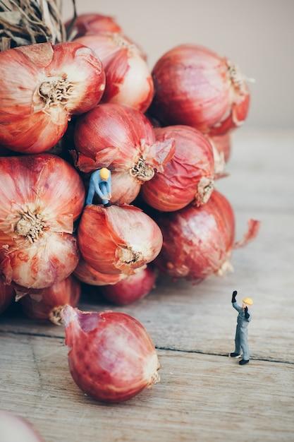 Garlic with working dolls Free Photo
