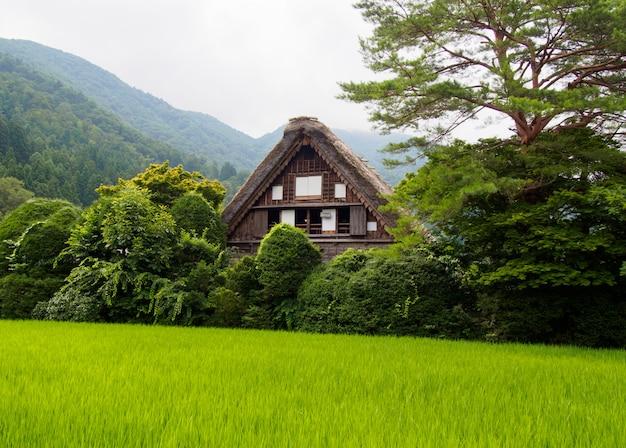 Gassho-zukuri house , historic village of shirakawa-go in summer , japan Premium Photo