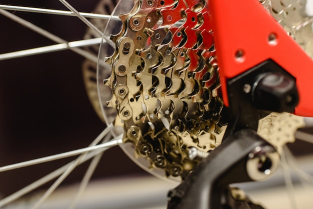 Gear crown of a clean bicycle. Premium Photo