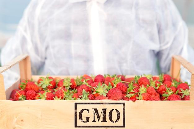 遺伝子組み換え果実の生産 無料写真