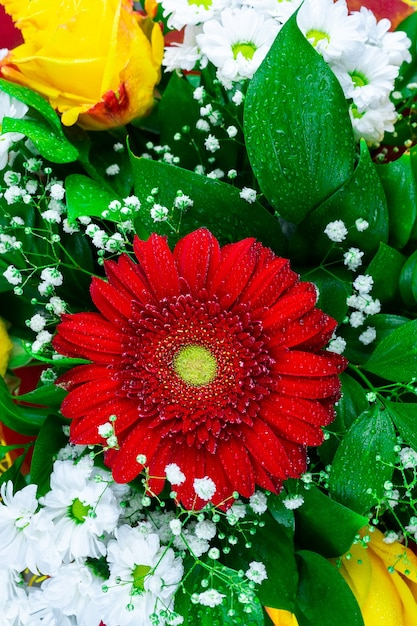 Gerbera chrysanthemum and rose Premium Photo