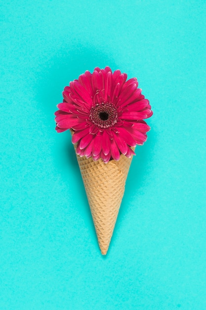 Gerbera flower in waffle cone on blue table Free Photo