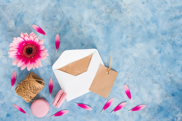 Gerbera flower with envelope and macaroons Free Photo
