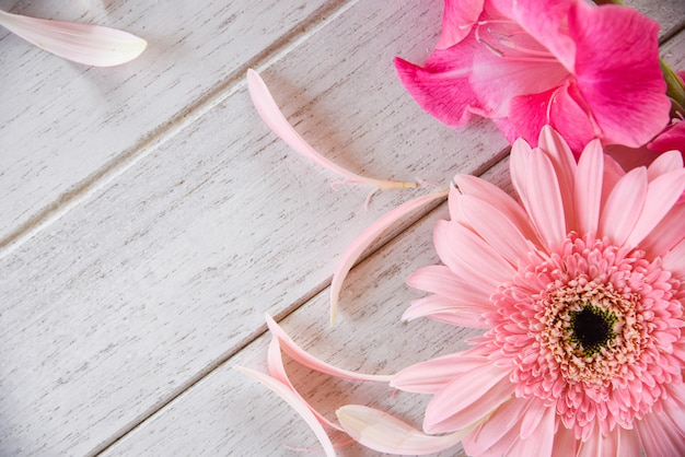 Gerbera pink gladiolus flower spring summer and petal decorate on white wooden Premium Photo