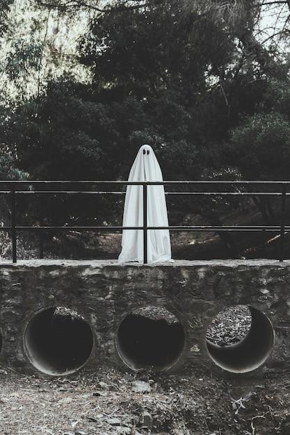 Ghost standing on bridge in park Free Photo