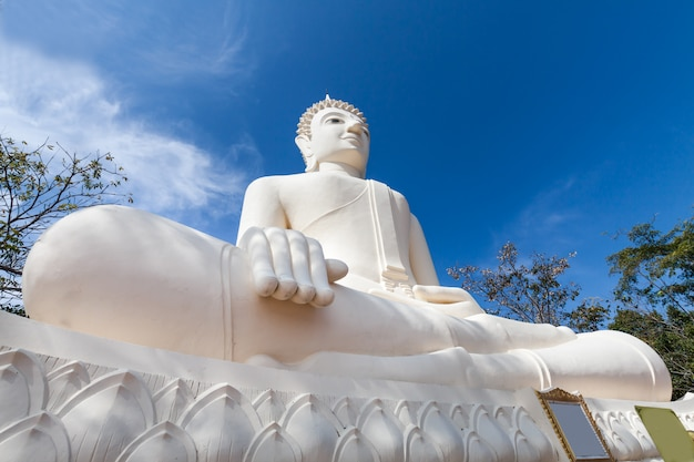 Giant big buddha statue with blue sky in nature landscape Premium Photo