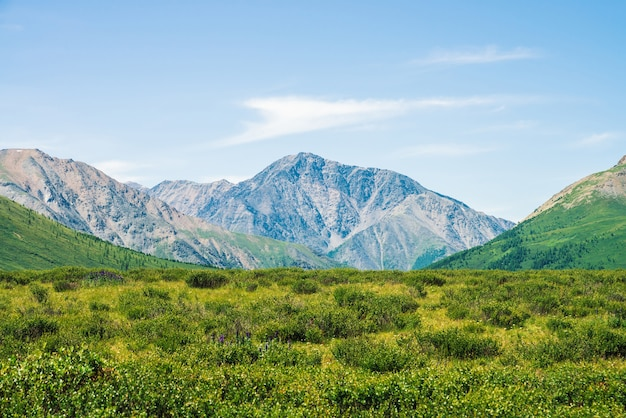 Giant mountains above green valley under clear blue sky. Premium Photo
