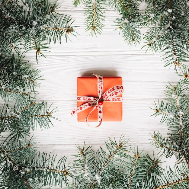 Gift box framed by fir branches photo free download gift box framed by fir branches free photo negle Choice Image
