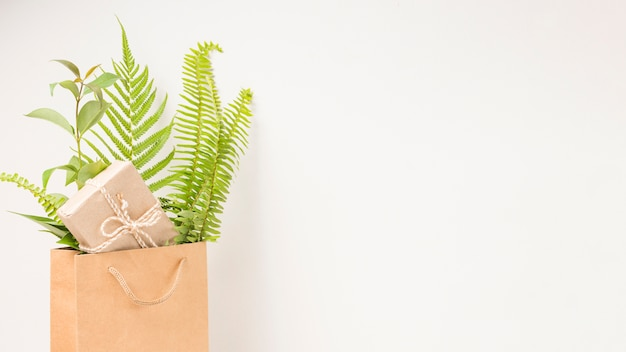 A gift box and green fern leaves in brown paper bag with space for text Free Photo