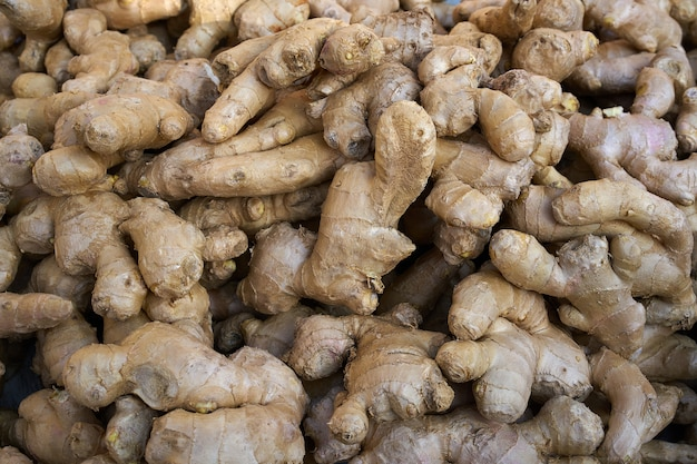 Ginseng ginger roots background pattern Premium Photo