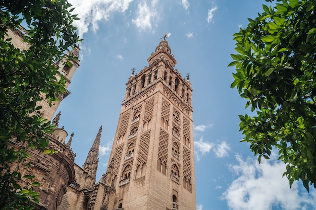 The giralda tower in seville, andalusia Premium Photo
