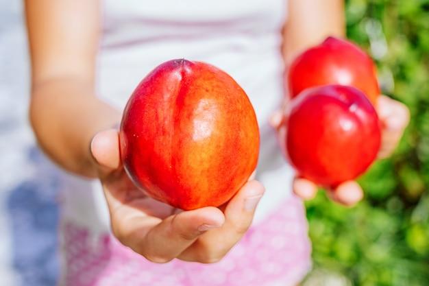 Девушка держит в руке спелый красный персик. Premium Фотографии