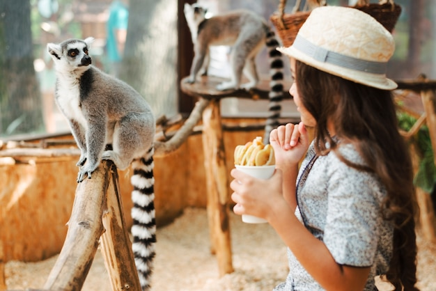 Girl holding glass of apple slices looking at ring-tailed lemur in the zoo Free Photo