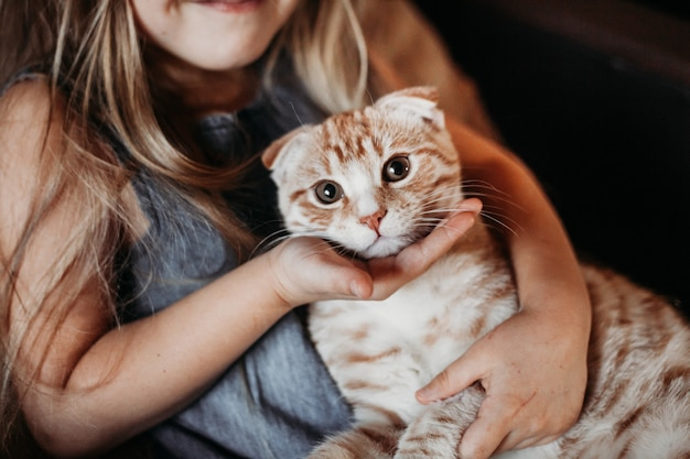 Girl is home with her dog pug and a cat in the comfort of home Premium Photo