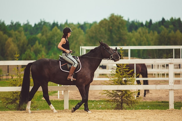 The girl rides a horse Free Photo