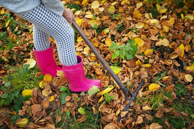 A girl in rubber boots holds a rake and rakes the fallen leaves. Premium Photo