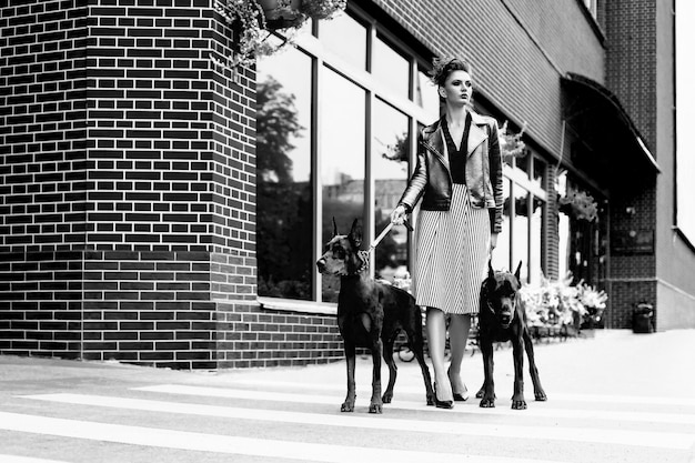 A girl walks along the street in the city along the building with two dobermans on a leash Premium Photo