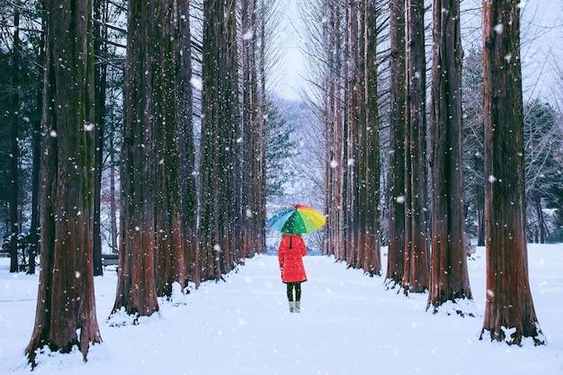 行の木、韓国の南怡島のカラフルな傘を持つ少女。韓国の冬。 無料写真