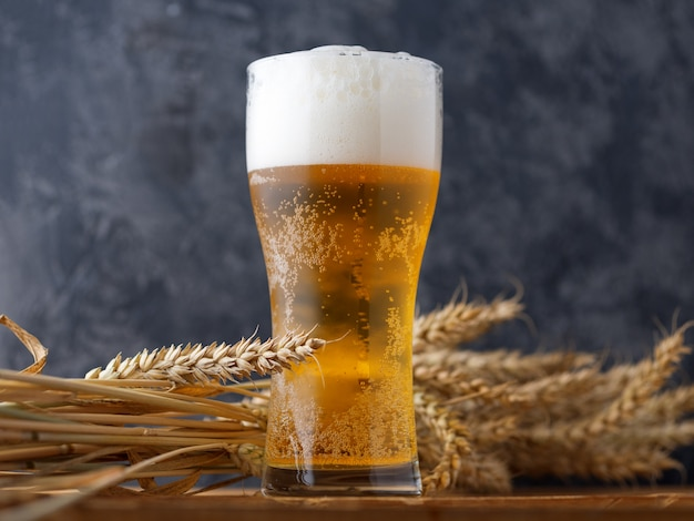 A glass of beer against a dark wall Premium Photo