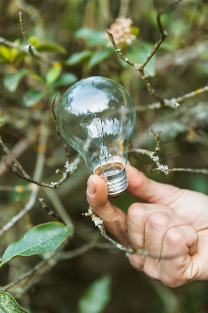 Glass bulb in fingers in summer nature Free Photo