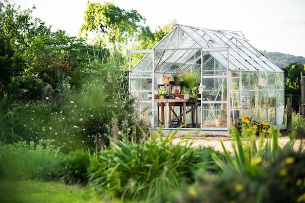 Glass greenhouse Free Photo