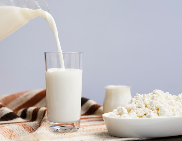 Glass of milk, yogurt and cottage cheese Free Photo