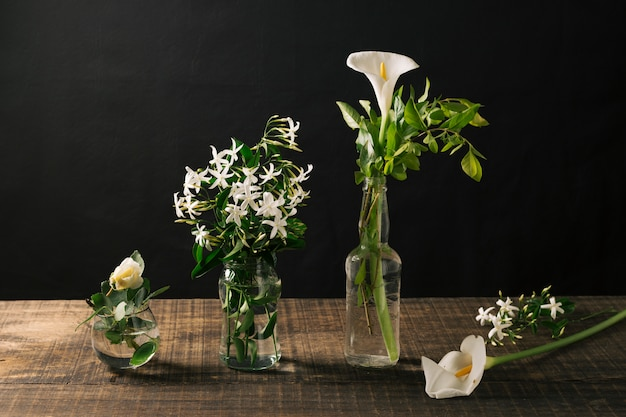 Glass vases with white flowers Free Photo