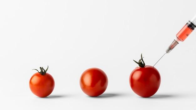 Gmo 화학 수정 식품 체리 토마토 무료 사진