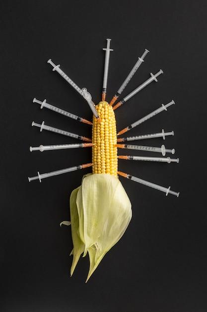 Gmo 화학 변형 식품 옥수수 및 주사기 무료 사진