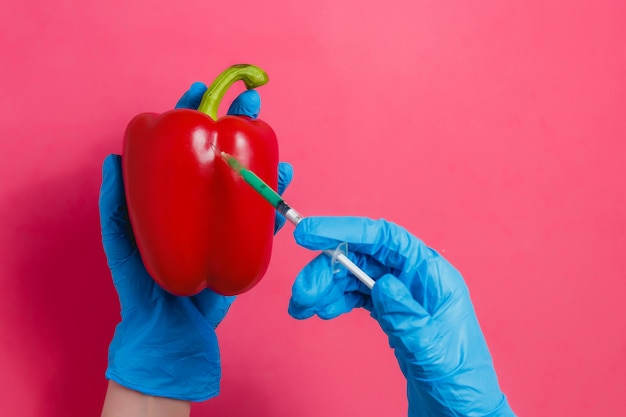 Gmo scientist injecting green liquid from syringe into red pepper Premium Photo