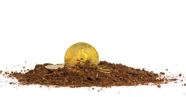 Gold coins or bitcoin on the soil virtual money. future investment concept Premium Photo