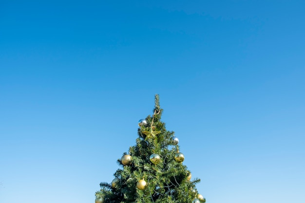 Gold decoration on christmas tree and blue sky Free Photo