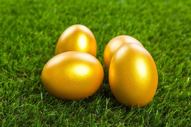 芝生の上で金の卵 無料写真