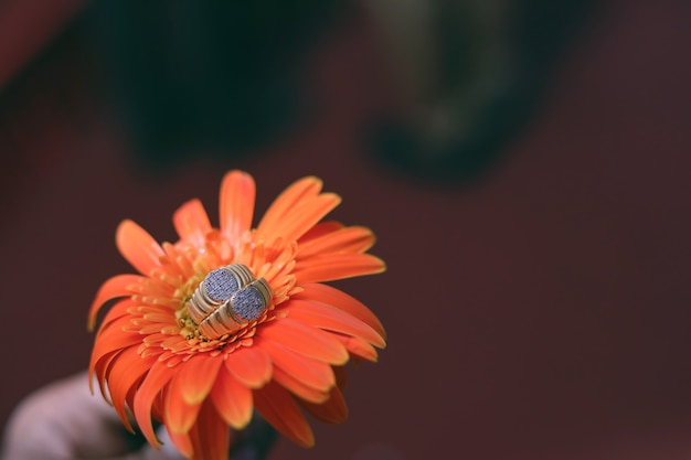 Golden engagement ring on flower Premium Photo