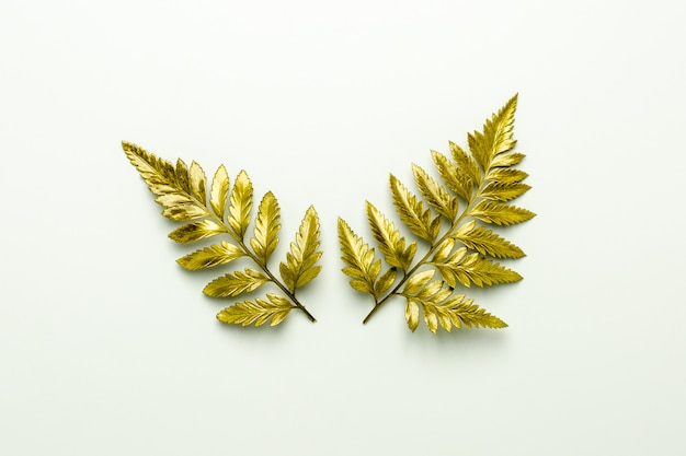 Golden fern leaves isolated on white background. Premium Photo