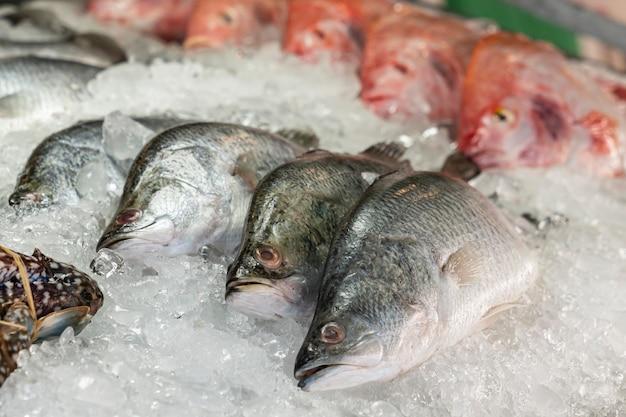魚介類の氷の上で黄金の頭ドラドbre、ストリートマーケット、魚の列のクローズアップ Premium写真