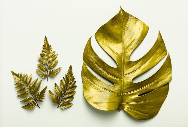 Golden leaves isolated on white background. Premium Photo