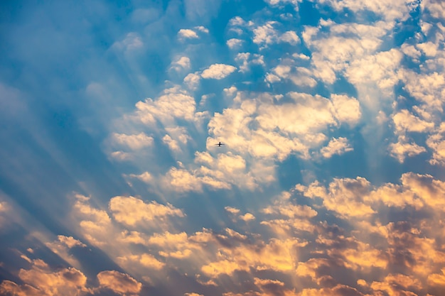 The golden light of the sun and the plane in the sky. Premium Photo