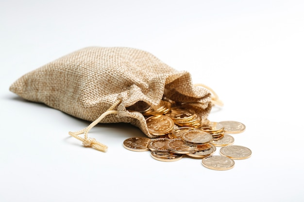 Golden rmb coins in cloth bag Free Photo