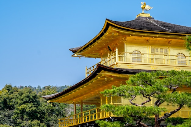 Golden temple, japan Premium Photo