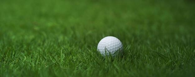 Golf ball on green grass background Premium Photo