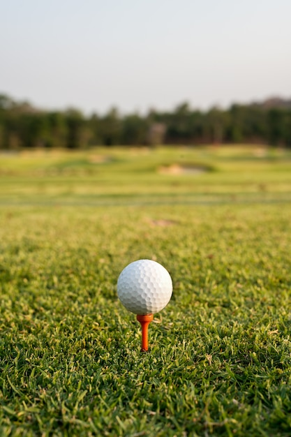 Golf ball on a tee against the golf course. close up at golf ball and tee Premium Photo