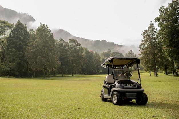 골프 카트가 주차되었습니다. 발리. 인도네시아 무료 사진