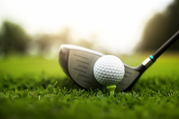 Golf course green and golf ball close in the grass field Premium Photo