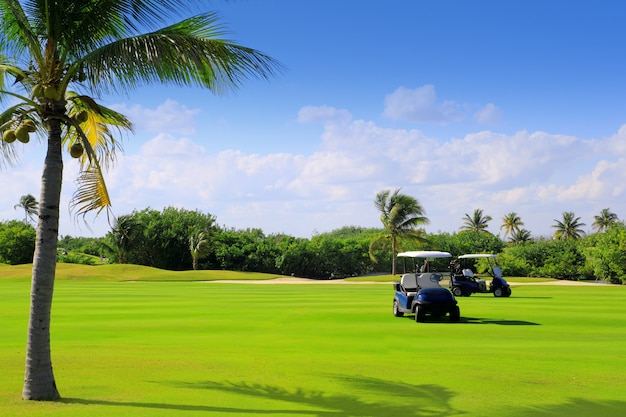 Golf course tropical palm trees in mexico Premium Photo