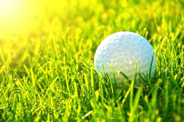 골프 게임 무료 사진